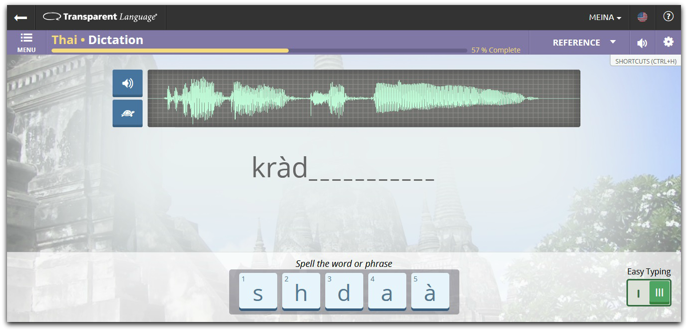 Transparent Language - Dictation Without Easy Typing